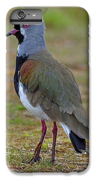 Lapwing iPhone 6s Plus Case - Positive Spurs by Tony Beck