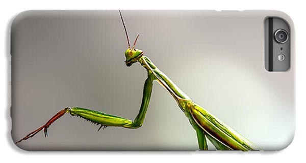 Praying Mantis  IPhone 6s Plus Case by Bob Orsillo