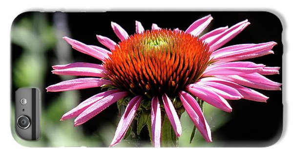 Pretty Pink Coneflower IPhone 6s Plus Case