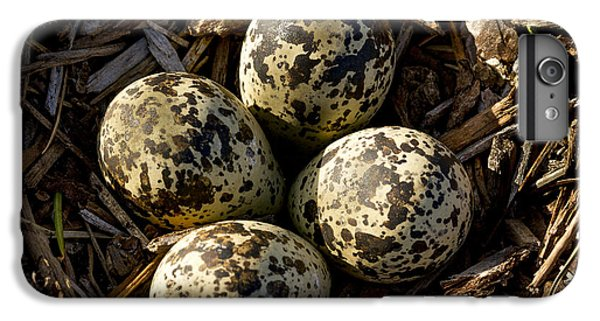 Killdeer iPhone 6s Plus Case - Quartet Of Killdeer Eggs By Jean Noren by Jean Noren