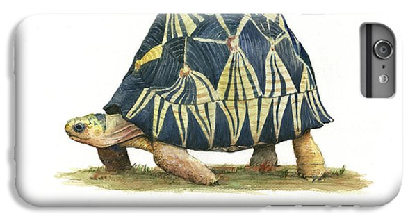 Radiated Tortoise  IPhone 6s Plus Case by Juan Bosco
