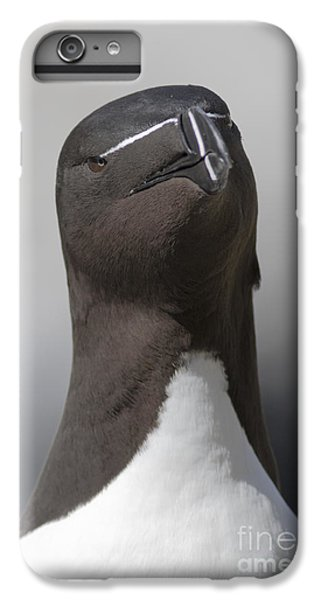 Razorbill IPhone 6s Plus Case
