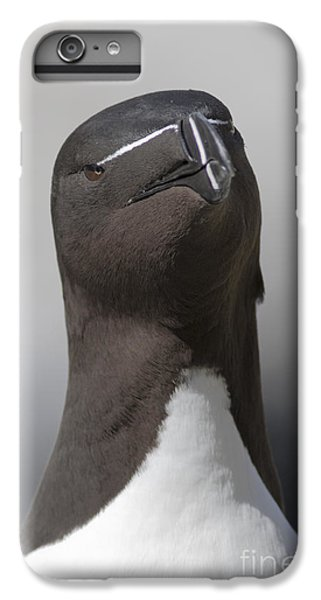Razorbill IPhone 6s Plus Case by Karen Van Der Zijden