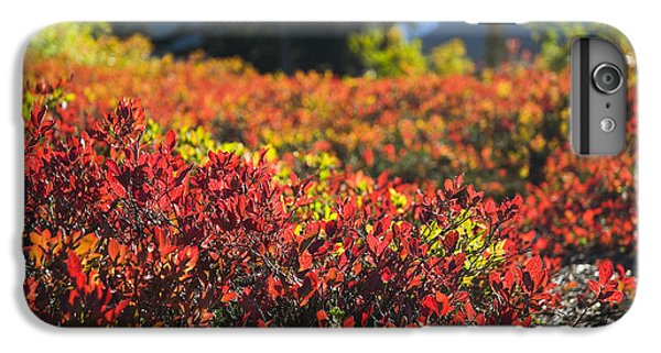 IPhone 6s Plus Case featuring the photograph Red Blueberry Leaves In The Mountains by Yulia Kazansky