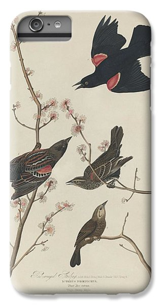 Starlings iPhone 6s Plus Case - Red-winged Starling by Dreyer Wildlife Print Collections