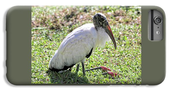 Resting Wood Stork IPhone 6s Plus Case