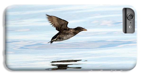 Auklets iPhone 6s Plus Case - Rhinoceros Auklet Reflection by Mike Dawson