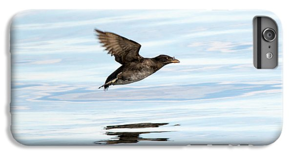 Rhinoceros Auklet Reflection IPhone 6s Plus Case by Mike Dawson