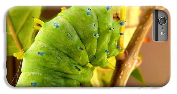 IPhone 6s Plus Case featuring the photograph Robin Moth Caterpillar by Claire Bull