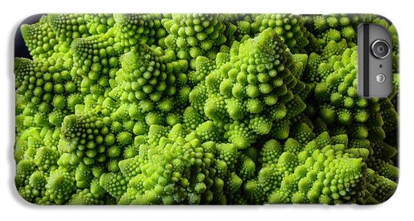 Romanesco Broccoli IPhone 6s Plus Case by Garry Gay