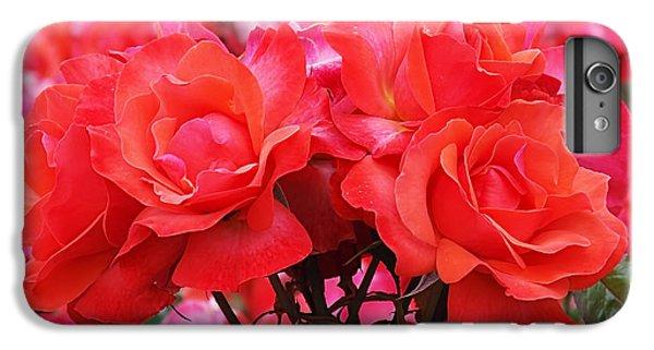 Rose Abundance IPhone 6s Plus Case by Rona Black