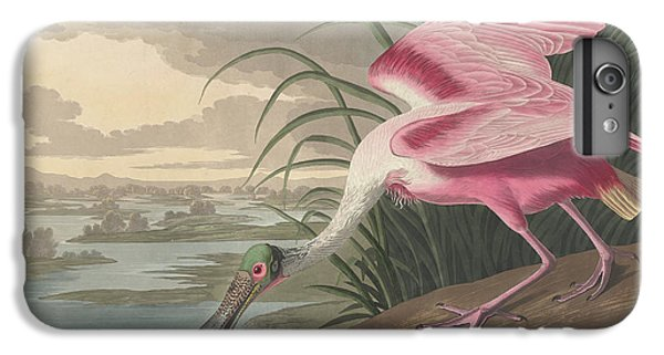Roseate Spoonbill, 1836  IPhone 6s Plus Case by John James Audubon
