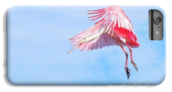 Roseate Spoonbill Final Approach IPhone 6s Plus Case by Mark Andrew Thomas