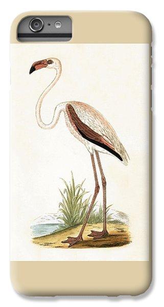Rosy Flamingo IPhone 6s Plus Case