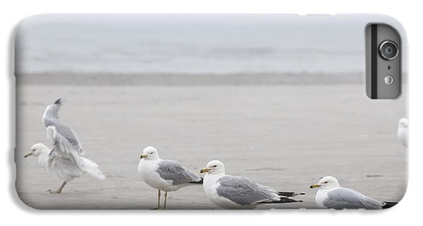 Seagulls On Foggy Beach IPhone 6s Plus Case by Elena Elisseeva