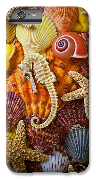 Seahorse iPhone 6s Plus Case - Seahorse And Assorted Sea Shells by Garry Gay