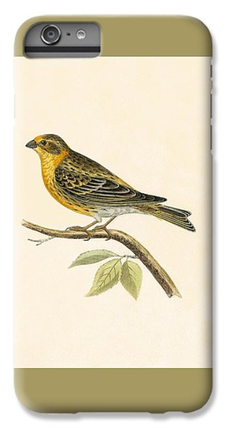 Serin Finch IPhone 6s Plus Case