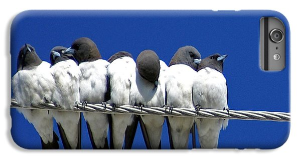 Swallow iPhone 6s Plus Case - Seven Swallows Sitting by Holly Kempe
