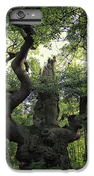 Dungeon iPhone 6s Plus Case - Sherwood Forest by Martin Newman