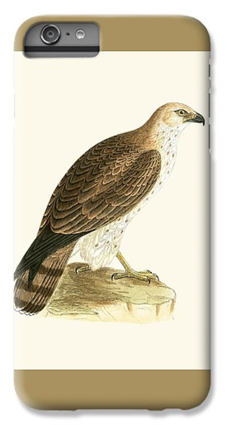 Short Toed Eagle IPhone 6s Plus Case by English School