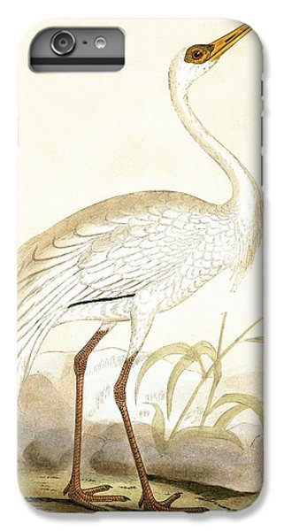 Siberian Crane IPhone 6s Plus Case by English School