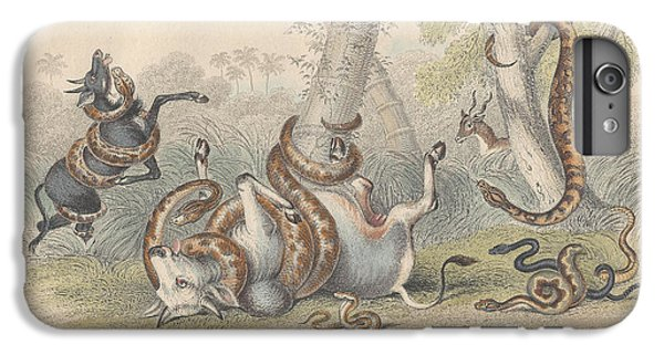 Snakes IPhone 6s Plus Case by Rob Dreyer