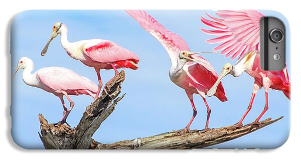 Spoonbill Party IPhone 6s Plus Case