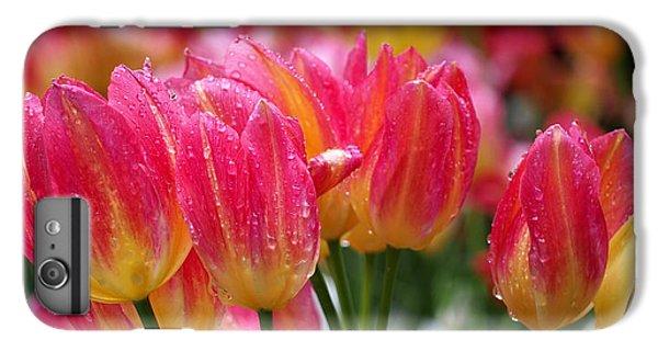 Spring Tulips In The Rain IPhone 6s Plus Case