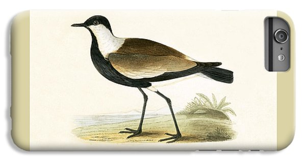 Lapwing iPhone 6s Plus Case - Spur Winged Plover by English School