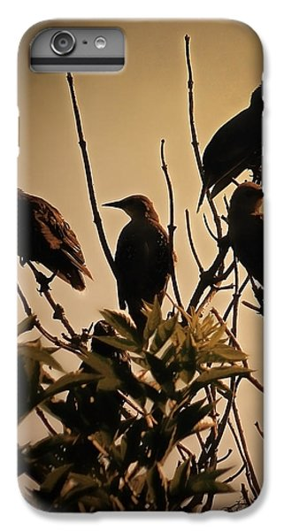 Starlings IPhone 6s Plus Case by Sharon Lisa Clarke