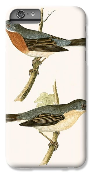 Sub Alpine Warbler IPhone 6s Plus Case by English School