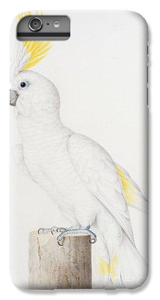 Sulphur Crested Cockatoo IPhone 6s Plus Case by Nicolas Robert