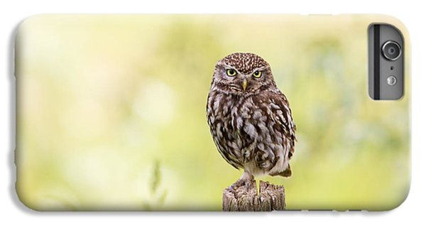 Sunken In Thoughts - Staring Little Owl IPhone 6s Plus Case by Roeselien Raimond