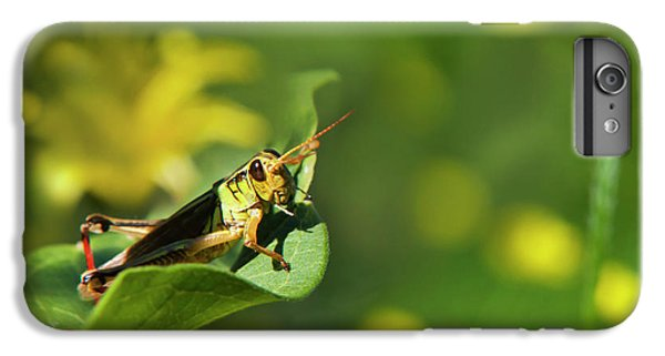 Green Grasshopper IPhone 6s Plus Case