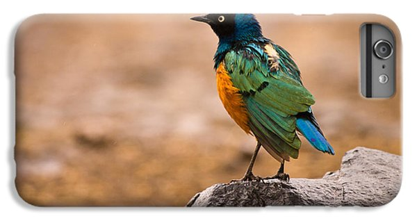 Starlings iPhone 6s Plus Case - Superb Starling by Adam Romanowicz