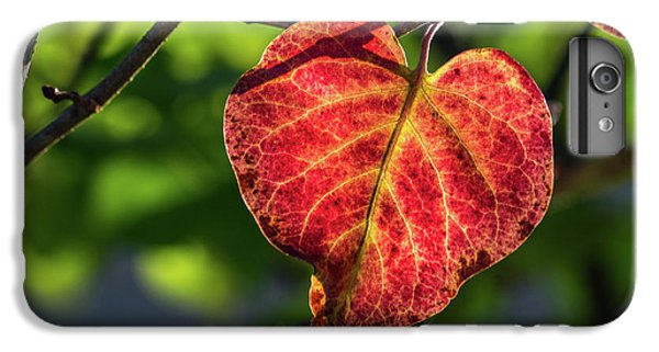 IPhone 6s Plus Case featuring the photograph The Autumn Heart by Bill Pevlor