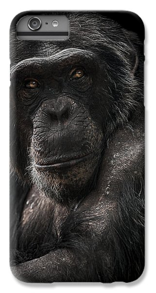Chimpanzee iPhone 6s Plus Case - The Contender by Paul Neville