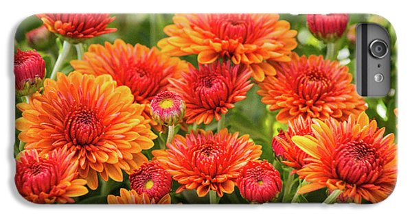 IPhone 6s Plus Case featuring the photograph The Fall Bloom by Bill Pevlor