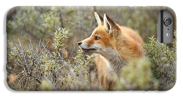 The Fox And Its Prey IPhone 6s Plus Case by Roeselien Raimond