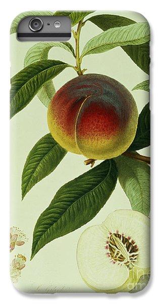 The Galande Peach IPhone 6s Plus Case