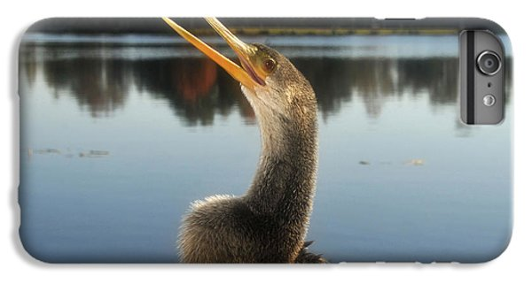 The Great Golden Crested Anhinga IPhone 6s Plus Case by David Lee Thompson