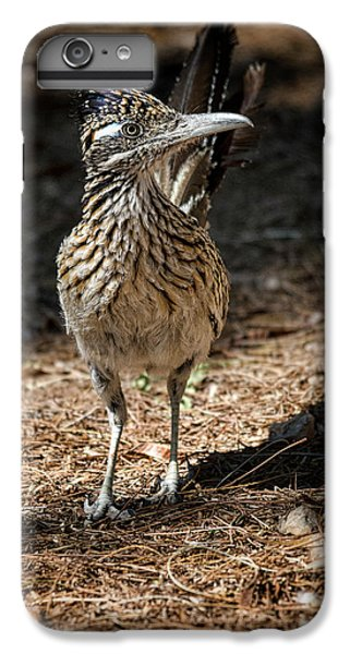 The Greater Roadrunner Walk  IPhone 6s Plus Case