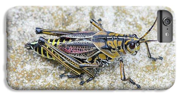 The Hopper Grasshopper Art IPhone 6s Plus Case