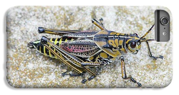 The Hopper Grasshopper Art IPhone 6s Plus Case by Reid Callaway