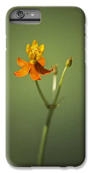 The One - Asclepias Curassavica - Butterfly Milkweed IPhone 6s Plus Case by Johan Hakansson