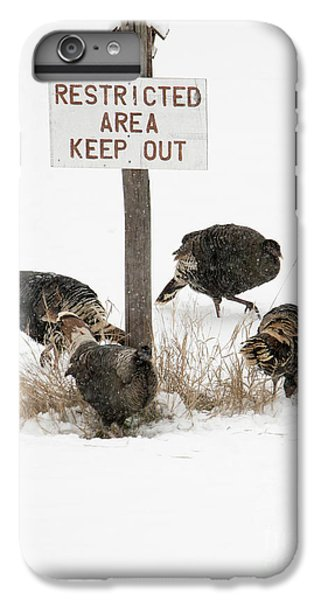 The Turkey Patrol IPhone 6s Plus Case by Mike Dawson