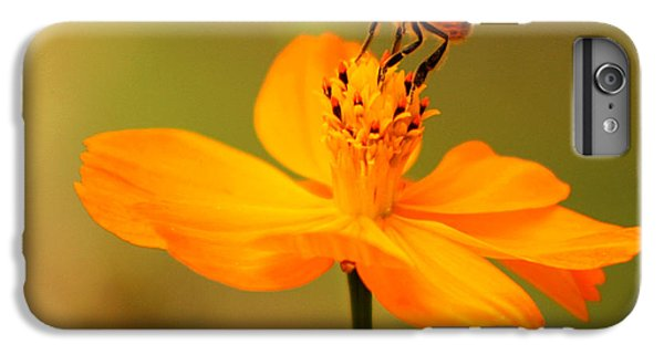 Nature iPhone 6s Plus Case - Tiny Dancer by Marion Cullen