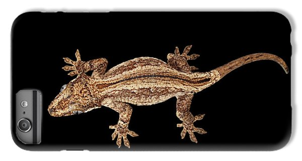 Top View Of Gargoyle Gecko, Rhacodactylus Auriculatus Staring Isolated On Black Background. Native T IPhone 6s Plus Case