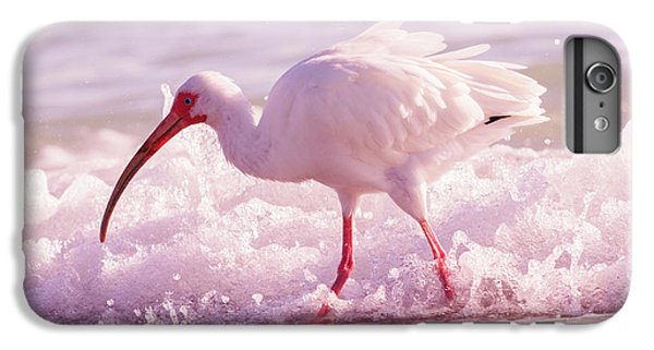 Ibis iPhone 6s Plus Case - Tranquil Beauty Cortez Beach by Betsy Knapp