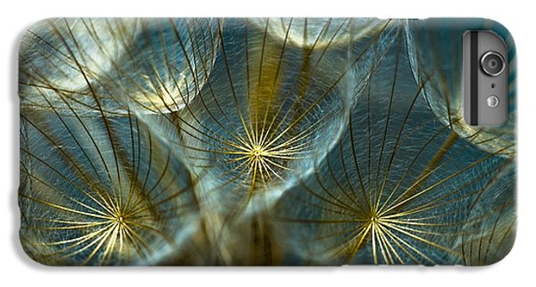 Nature iPhone 6s Plus Case - Translucid Dandelions by Iris Greenwell